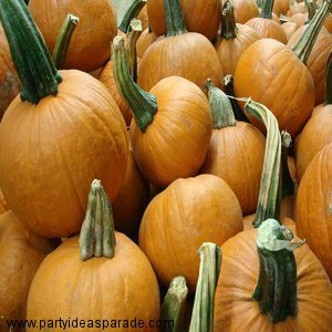 To roast pumpkin seeds with my recipe you are going to need some pumpkins...so go on down to your local farm!