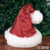 Look at this beautiful Sequin Santa Hat...it's perfect for Christmas!