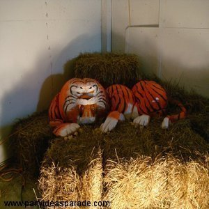 Here's a Tiger made from lots of pumpkins.  Carve it, paint it and you too can create this amazing pumpkin carving!